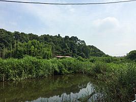 第52回新京成沿線健康ハイキング